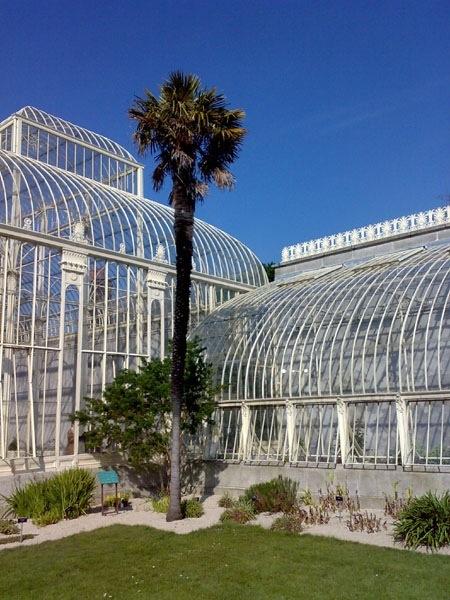 Botanic Gardens: Ireland's second top tourist attraction